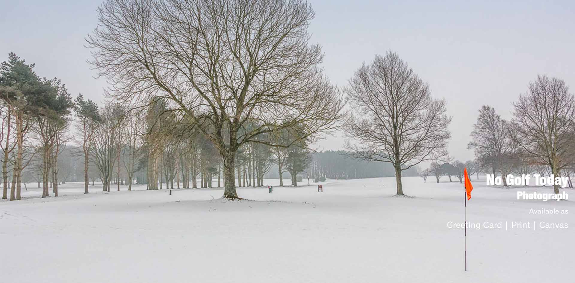 No Golf Today at Ponteland Golf Club | Ponteland Print & Publishing
