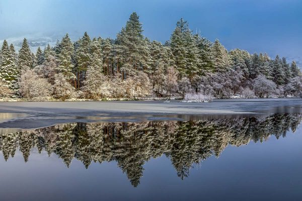 Pine Tree Reflections catching the Sun at Glencoe Lochan-2688 Ponteland Print Christmas Card