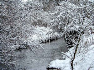 Ponteland Park in Winter-PC230016 Xmas Card | Ponteland Print & Publishing