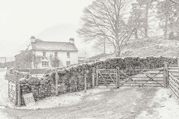 Yew Tree Farm, Lake District Christmas Card, Ponteland Print & Publishing