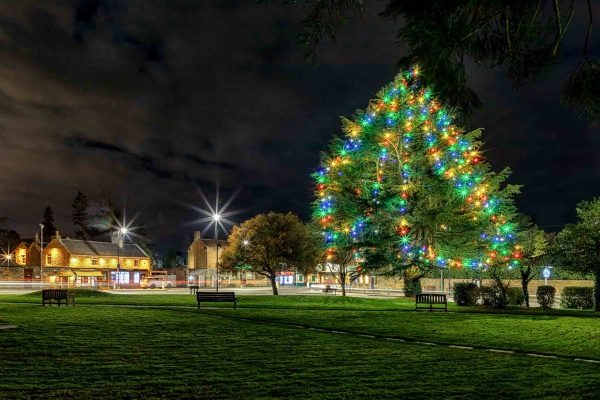Ponteland Village Green Christmas Lights-3492 | Ponteland Print & Publishing